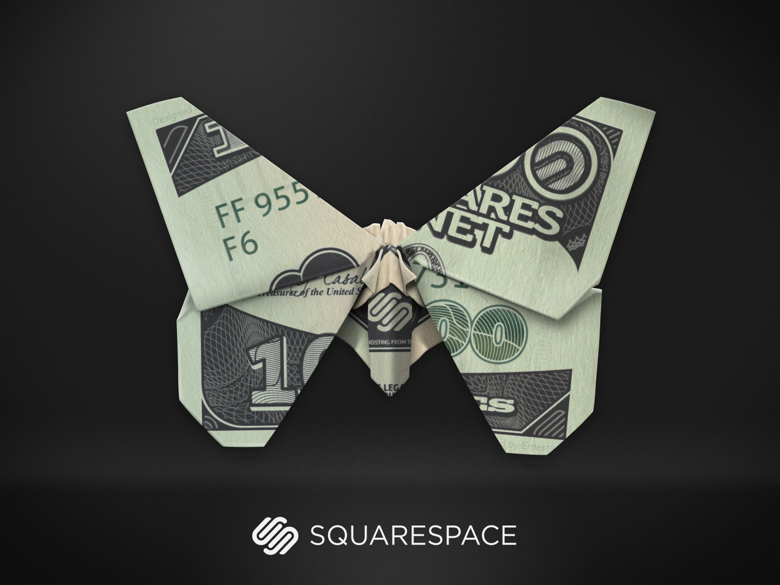 squarespace-butterfly